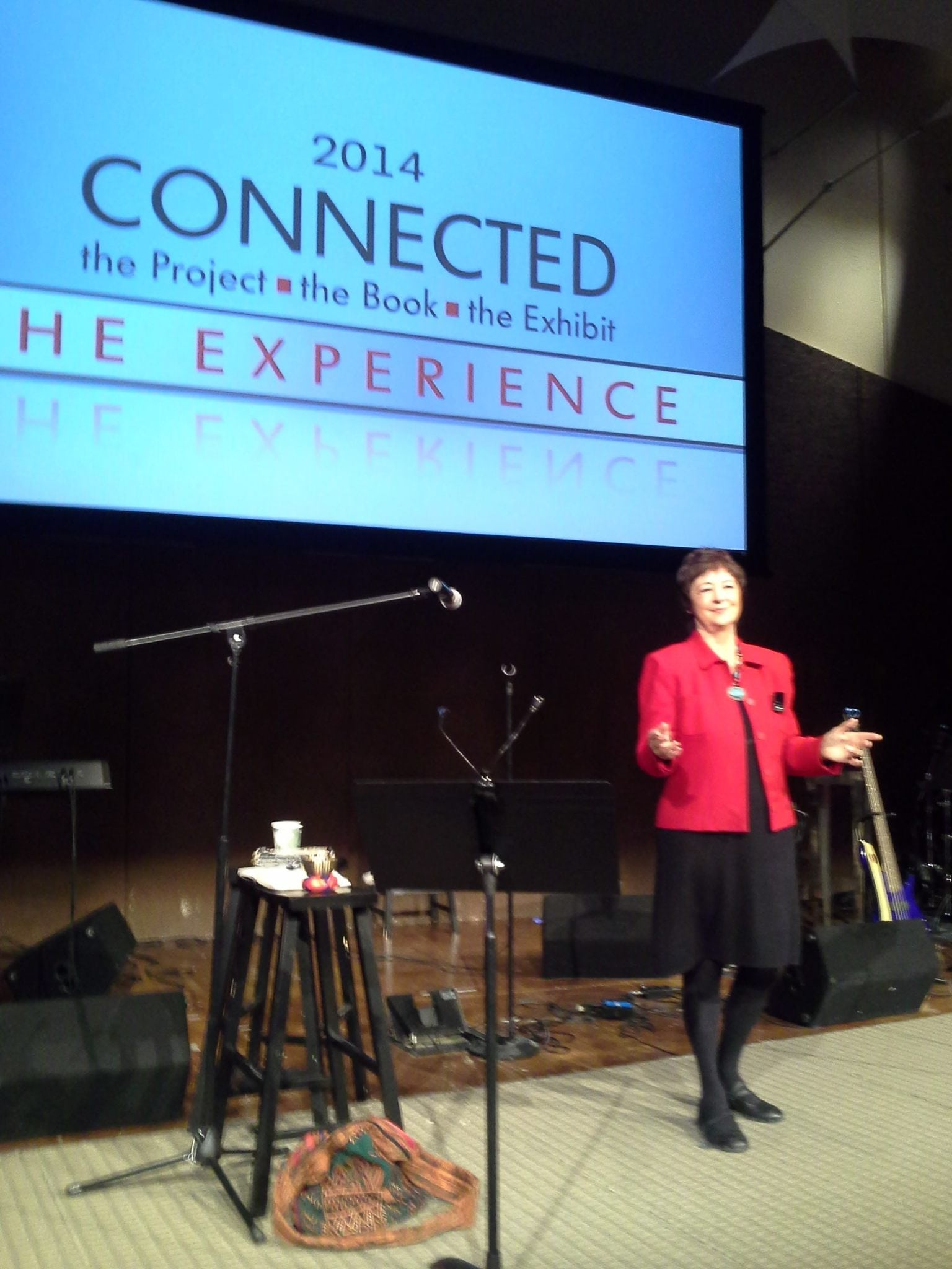 Kathy Perry at Connected Conference